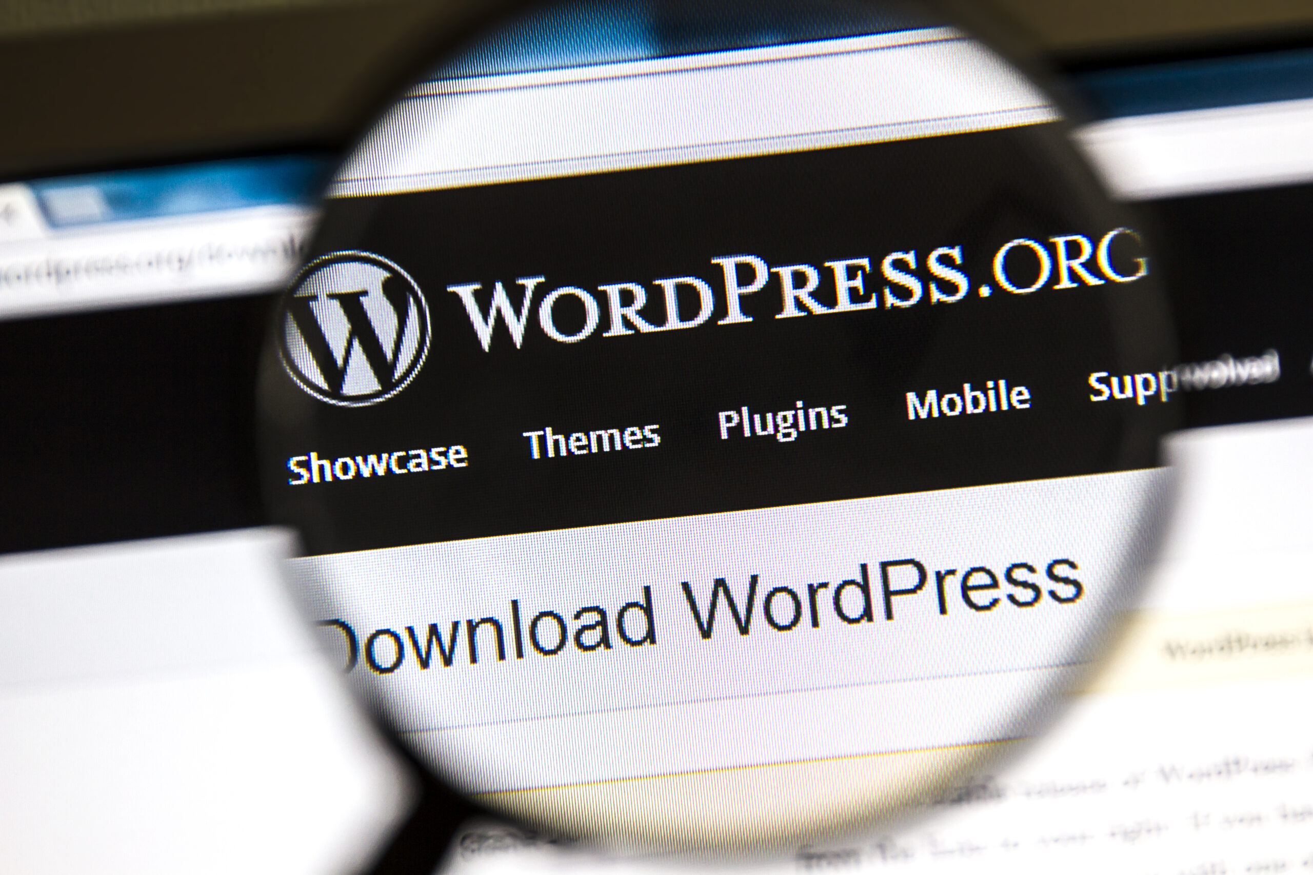 WordPress CMS: How to Choose a CMS for Your Website – 2020